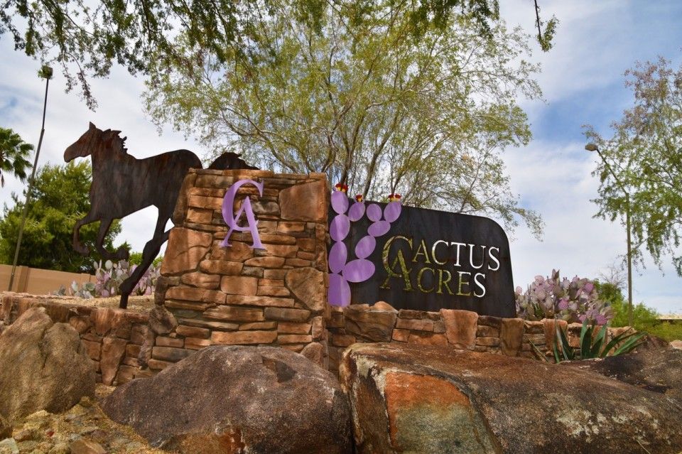 Cactus Acres | Christy Mooney Properties